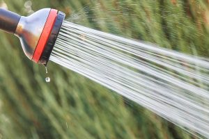 garden hose illustrating difference between purchased ads and SEO content marketing