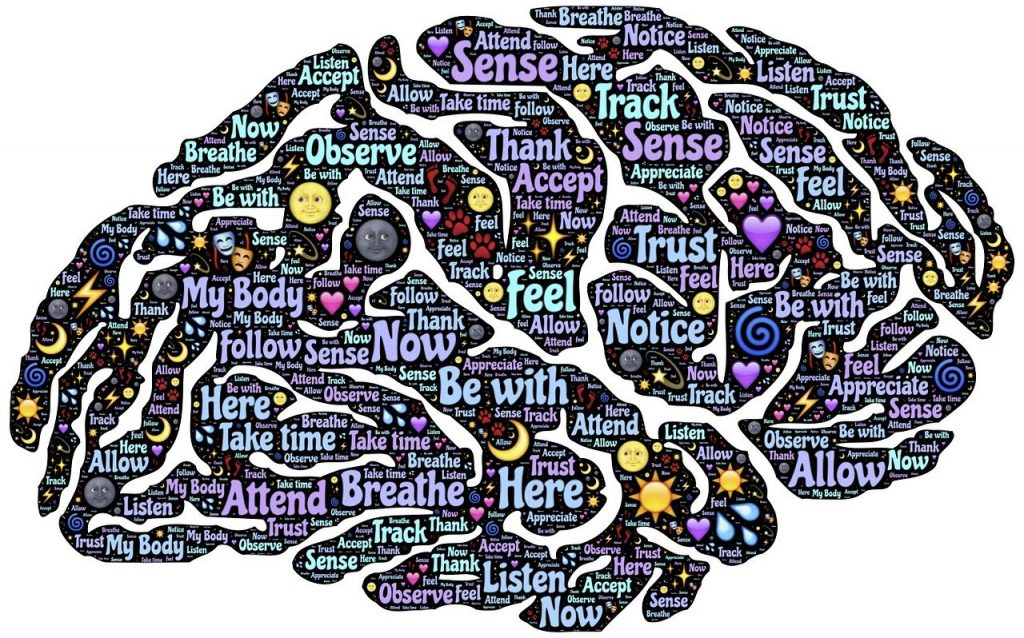 brain mind graphic - nurture your audience - attend, breathe, feel, notice, trust (and more)