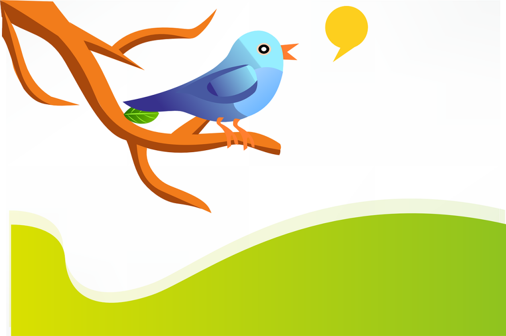 Graphic of a colorful bird tweeting on a tree branch - illustrating Twitter social media